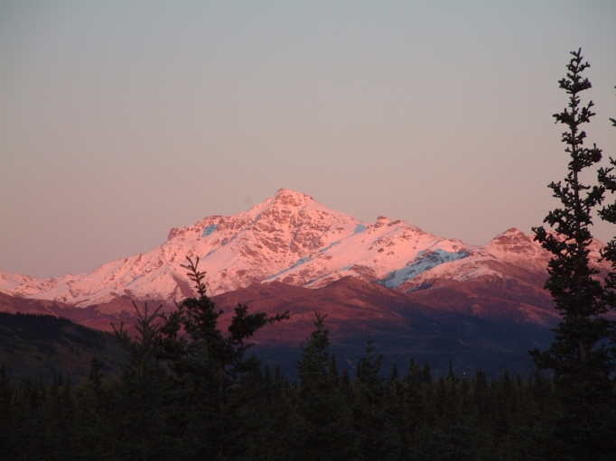 The fabled and beautiful 'Alpenglow' paints pastel colors along the Alaska Range
