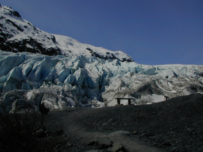 Exit Glacier Toe
