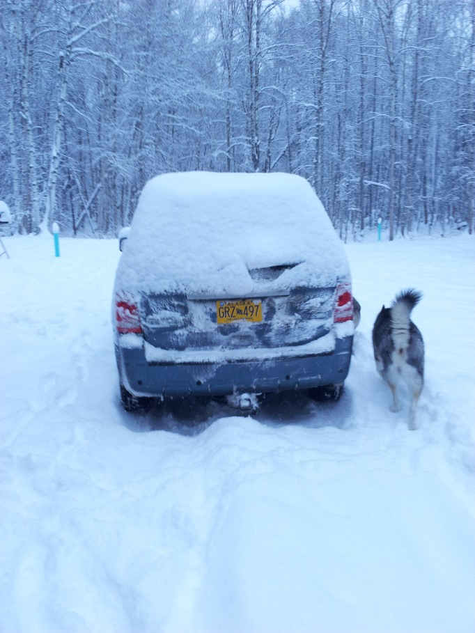 I Be Alaskan!