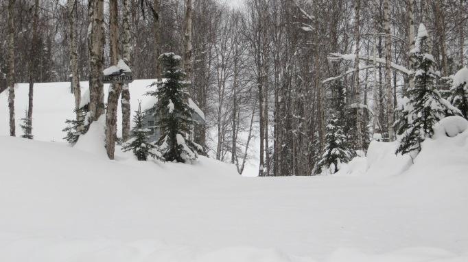 Snowbird Neighbors & Question Lake