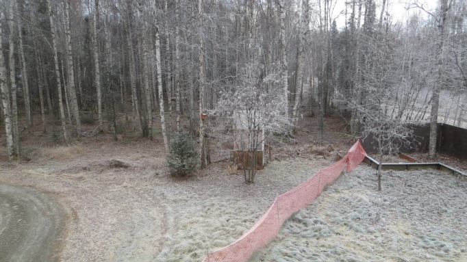 This was taken from the second floor master bedroom and the white is frost, not snow.  The flimsy orange barricade actually does keep the dogs within the back yard