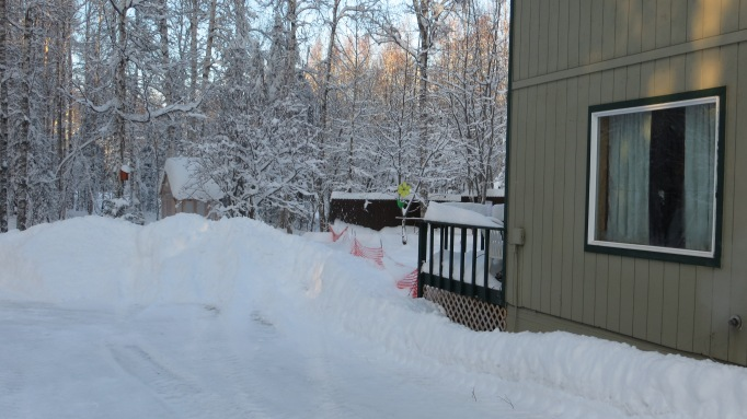 The south side of my place and the back yard buried in snow