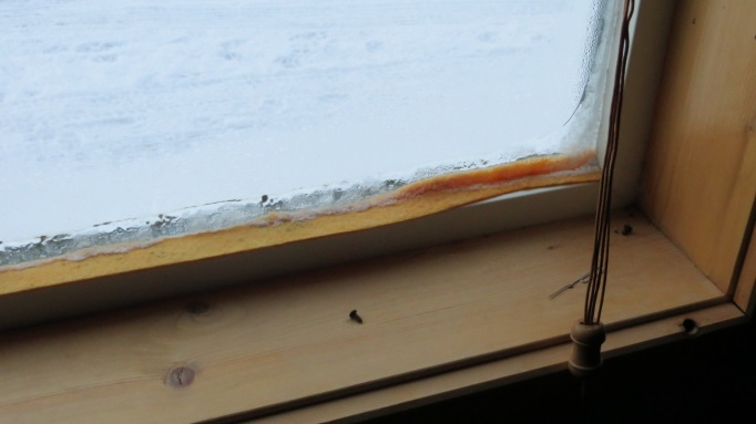 The yellow is a highly absorbent felt like material which has become frozen to the window; outside air temp -7.7 F