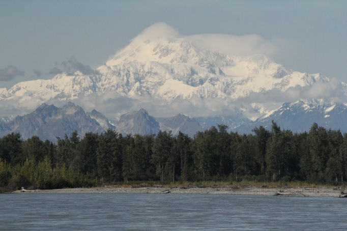 Majestic Denali as seen from the shore of the Susitna River in downtown Talkeetna