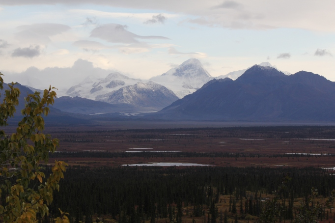 The incredible beauty of the Alaska Range in morning light with the tussock tundra in fall color from the Denali Highway (AK 8)