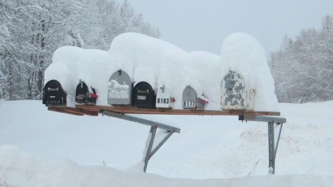 Buried Mailboxes on Spur